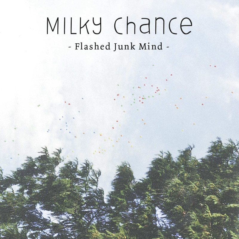 singlecover_flashed_junk_mind_v1